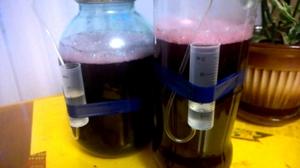 гидрозатвор для брожения